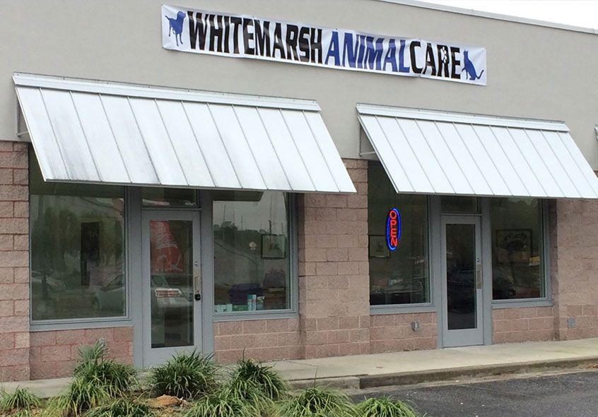 Whitemarsh Animal Care